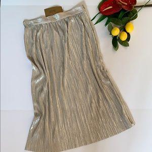 Zara Pleated Shinmer Skirt